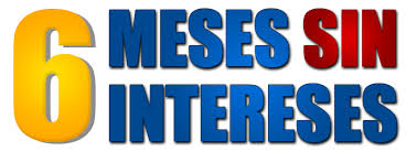 6 MESES SIN INTERESES